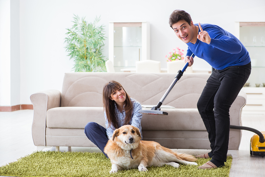 Man cleaning dog hair out of living room
